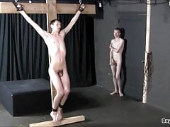 Whipped Crucified